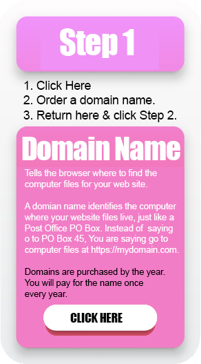 Get a domain name from selfhostingWP dot com
